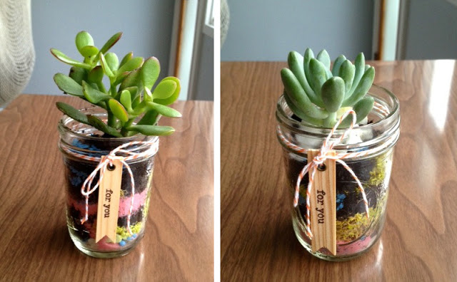 Terrarium Mason Jar Idea